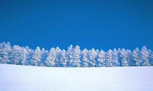 5 Songs to Get You Through Long Snow Days
