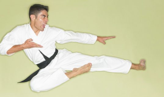 Stop-Motion Karate Is the New 'It' Sport