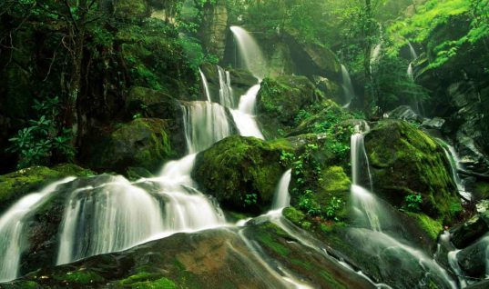 Top 6 Wettest Places on Earth