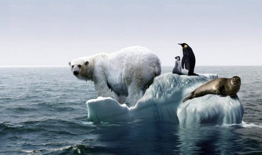 Study Says Not to Worry About Global Warming