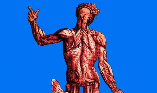 The Human Body: 15 Things You Didn't Know (Part 1)