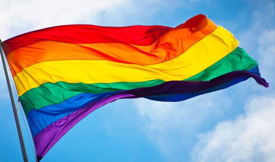 Gay Marriage: 15 Things You Should Know (Part 2)