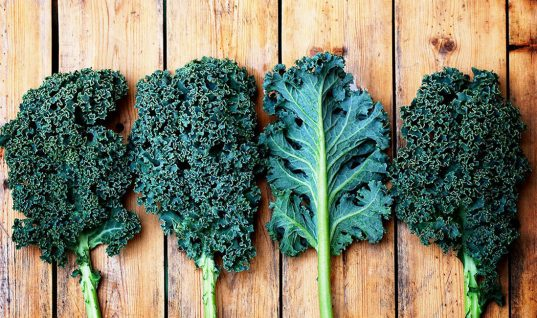 Kale: 15 Things You Didn't Know (Part 1)