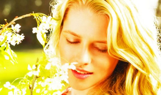 Teresa Palmer: 15 Things You Didn't Know (Part 1)