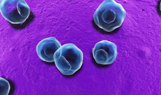Chlamydia: 15 Things You Should Know (Part 1)