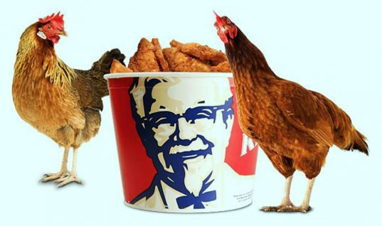 KFC: 8 Things You Didn't Know About Colonel Sanders