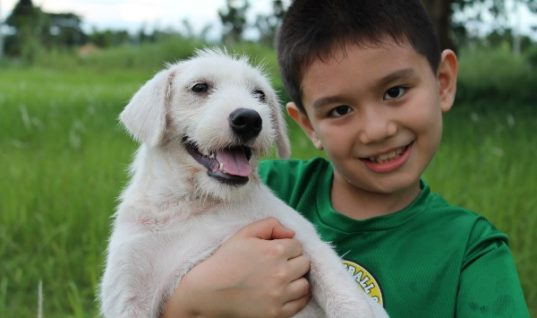 11-Year-Old Boy Started His Own Animal Shelter, And You Won't Believe How Many Animals He Saved