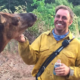 These Firefighters Were Called To Put Out A Fire—They Became Best Friends With An Elk Instead