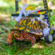 Injured Turtle Is Learning To Walk Again Thanks To LEGO Wheelchair Made By A Student