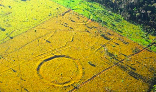 Unexplained Mysteries Of The Amazon Forest That Have Left The World Stunned